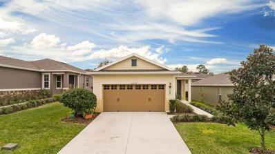 30543 Lipizzan Terrace, Mount Dora, FL 32757 - #: O5765399