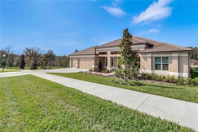 216 Camelot Loop, Clermont, FL 34711 - #: O5765719