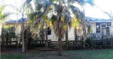 11820 Kent Grove Drive, Spring Hill, FL 34610 - #: O5767523