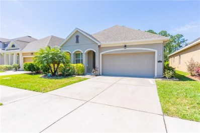 11424 Quiet Forest Drive, Tampa, FL 33635 - MLS#: O5776322