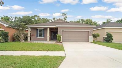 8510 Tidal Breeze Drive, Riverview, FL 33569 - #: O5777137