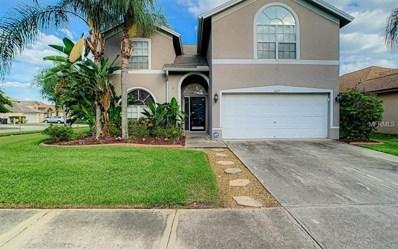 6609 Elliot Drive, Tampa, FL 33615 - #: O5778546