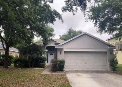 19140 Dove Creek Drive, Tampa, FL 33647 - MLS#: O5779640