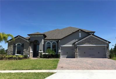 17675 Sailfin Drive, Orlando, FL 32820 - MLS#: O5782970