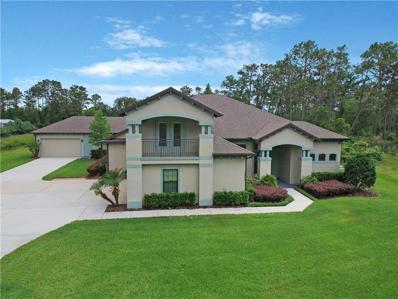 19472 Sheldon Street, Orlando, FL 32833 - MLS#: O5785175