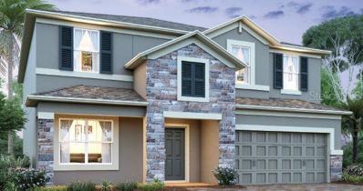 1317 Clear Brook Place, Saint Cloud, FL 34772 - MLS#: O5791869