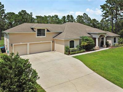 19407 Moorgate Street, Orlando, FL 32833 - #: O5795927