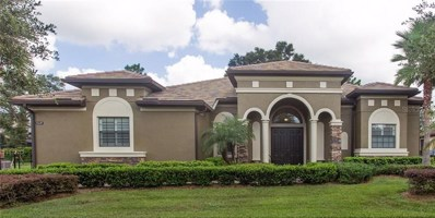 32649 View Haven Lane, Sorrento, FL 32776 - #: O5796659