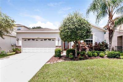 10620 Lucaya Drive, Tampa, FL 33647 - #: O5806163
