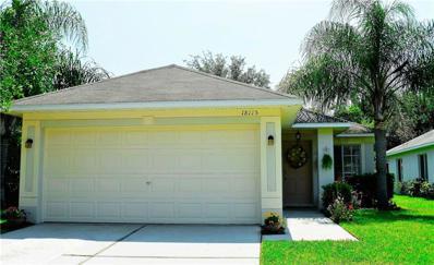 18115 Portside Street, Tampa, FL 33647 - #: O5813229