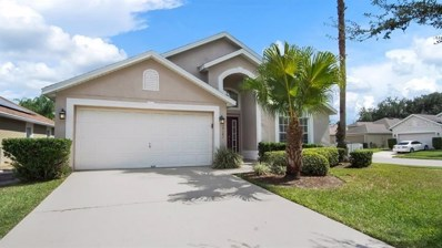 14101 Entrada Drive, Orlando, FL 32837 - #: O5818153