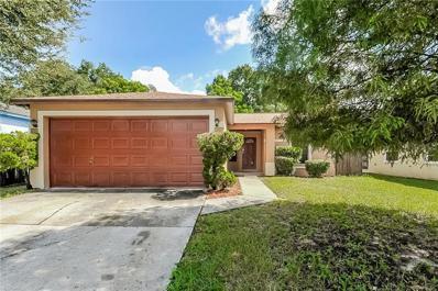 8445 N River Dune Street, Tampa, FL 33617 - #: O5819288