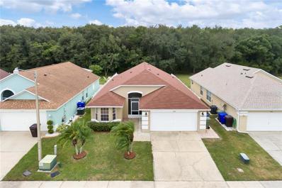 2202 Mallard Creek Circle, Kissimmee, FL 34743 - #: O5826479