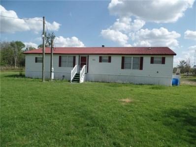 11611 Perkle Road, Lakeland, FL 33809 - MLS#: P4719326