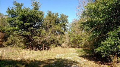 12415 Country Side Drive, Lakeland, FL 33809 - MLS#: P4719592
