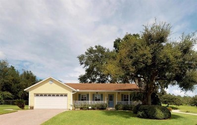 3113 Sandy Circle, Haines City, FL 33844 - MLS#: P4902127