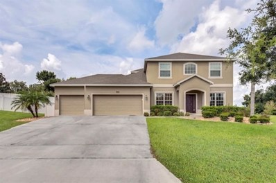 11804 Buttonhook Drive, Clermont, FL 34711 - MLS#: P4902209