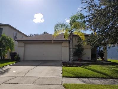 1168 Liberty Hall Drive, Kissimmee, FL 34746 - MLS#: P4902790