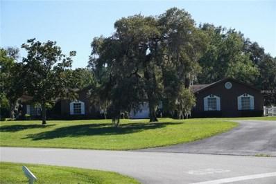 10620 Luscombe Court, New Port Richey, FL 34654 - MLS#: P4903385