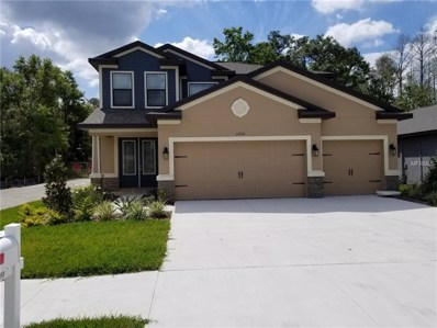 12310 Newt Court, New Port Richey, FL 34654 - MLS#: R4900138