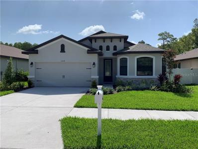 11418 Crown Pointe Street, New Port Richey, FL 34654 - MLS#: R4900877