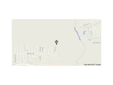 29 Perch Drive, Poinciana, FL 34759 - MLS#: S4851981