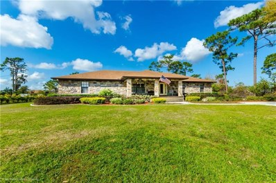 4220 Canoe Creek Road, Saint Cloud, FL 34772 - MLS#: S4858065