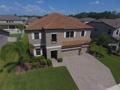 1441 Calm Waters Court, Saint Cloud, FL 34771 - MLS#: S4858491