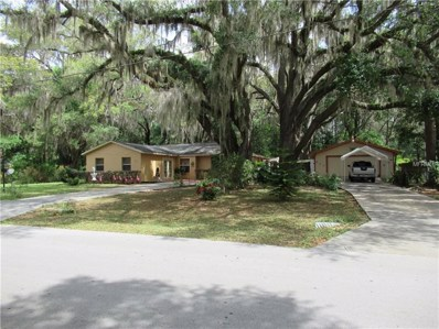 30 Cedar Tree Terrace, Ocala, FL 34472 - #: S4859236