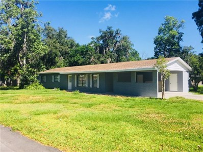 1105 Enchanted Drive, Lakeland, FL 33801 - MLS#: S5001235