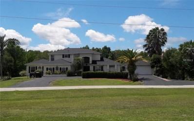 4102 Foxtail Court, Kissimmee, FL 34746 - MLS#: S5004306