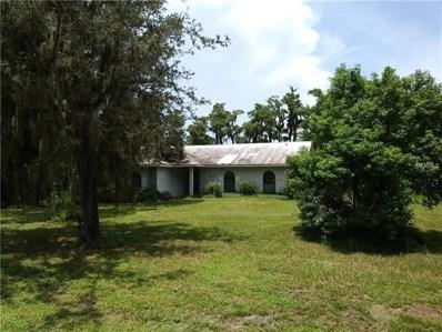 16957 Arrowhead Boulevard, Winter Garden, FL 34787 - MLS#: S5004848