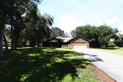 3101 Pinewood Court, Kissimmee, FL 34746 - MLS#: S5006239