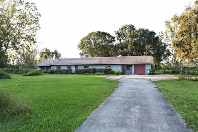 3200 Harbor Road, Kissimmee, FL 34746 - #: S5007288