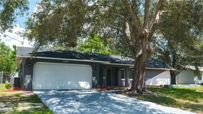 11053 Mayflower Road, Spring Hill, FL 34608 - MLS#: S5007455