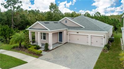 4646 Fairy Tale Circle, Kissimmee, FL 34746 - MLS#: S5008436