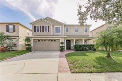 427 Janice Kay Place, Kissimmee, FL 34744 - #: S5009533