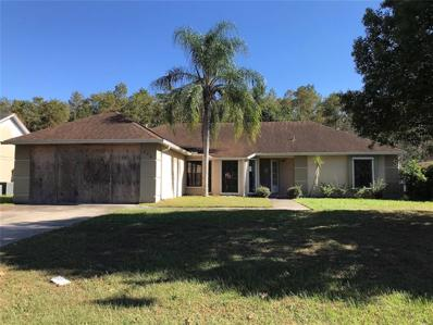 228 Red Maple Drive, Kissimmee, FL 34743 - MLS#: S5009783