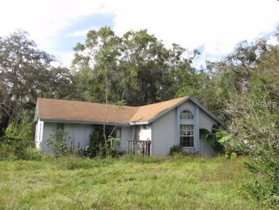 1634 Lime Street, Kissimmee, FL 34746 - MLS#: S5010495