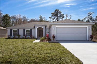 548 Maricopa Drive, Kissimmee, FL 34758 - MLS#: S5010916