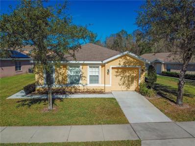 138 Ridgebrook Court, Davenport, FL 33896 - MLS#: S5011793
