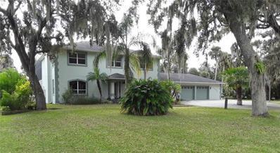 1250 Hidden Harbor Lane, Kissimmee, FL 34746 - MLS#: S5011853