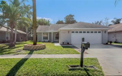 12421 Coriander Drive, Orlando, FL 32837 - #: S5011980