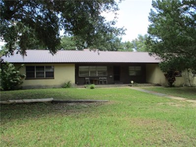 267 E Sunset Street, Groveland, FL 34736 - #: S5020114
