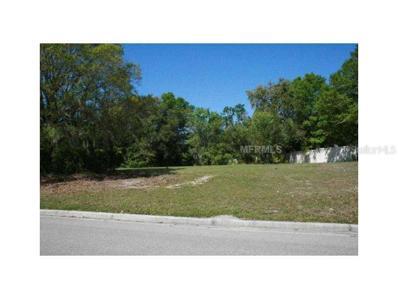 17040 Comunidad De Avila, Lutz, FL 33548 - MLS#: T2549490