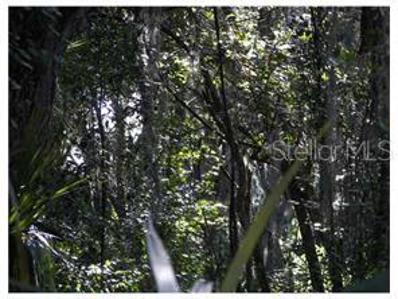 12450 Kelso Rd, Thonotosassa, FL 33592 - MLS#: T2780124