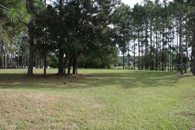 320 Pine Bluff Drive, Lutz, FL 33549 - MLS#: T2783588