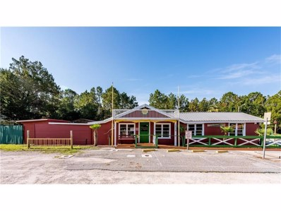 1451 W State Road 40, Astor, FL 32102 - MLS#: T2858354