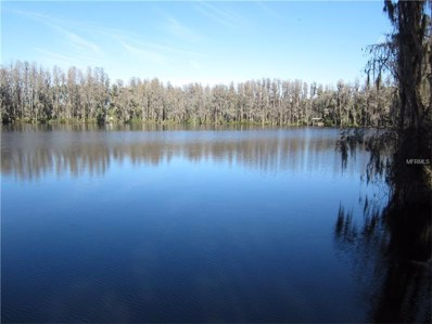 316 Newberger Road, Lutz, FL 33549 - MLS#: T2861212