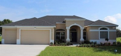 30205 Vienna Woods Lane, Wesley Chapel, FL 33545 - MLS#: T2861715